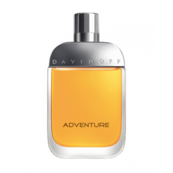 ADVENTURE EDT 100ML